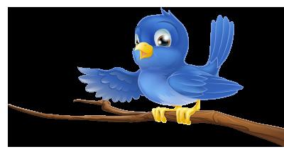 jcsweet-birdy-branch
